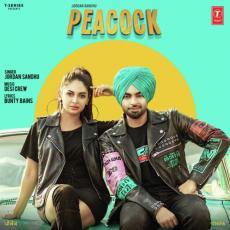 Peacock - Jordan Sandhu