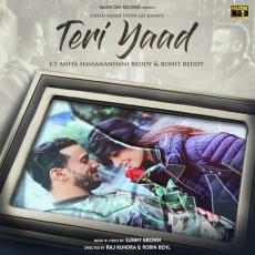 Teri Yaad - Rahat Fateh Ali Khan
